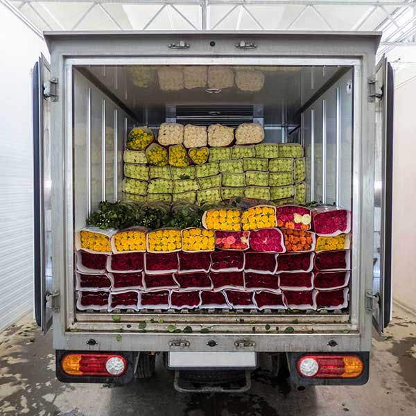 Examples Food & Beverage Products We Transport